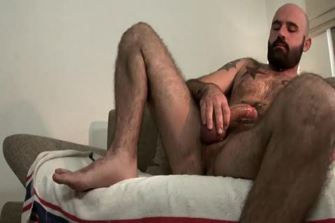 curly Bear stroking