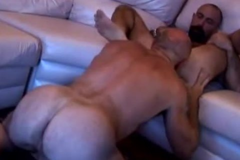 Two bushy daddies have sex on sofa