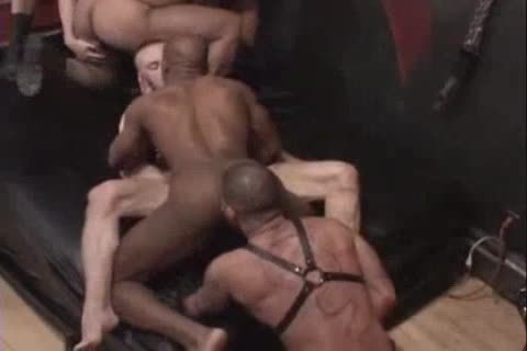 Leather orgy