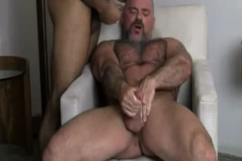 homo Bears wazoo Licking & banging