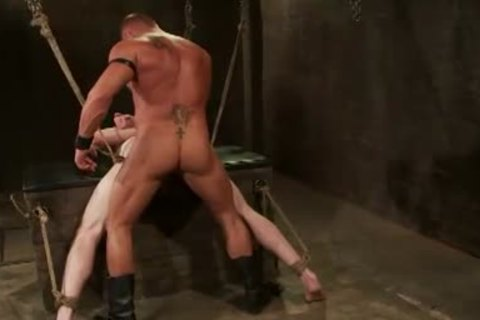 Rope bondage homosexual bushy ass pounded