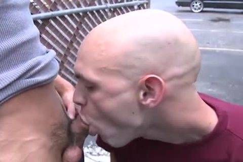 Bald White Hunk Sucks And bonks Muscle oriental