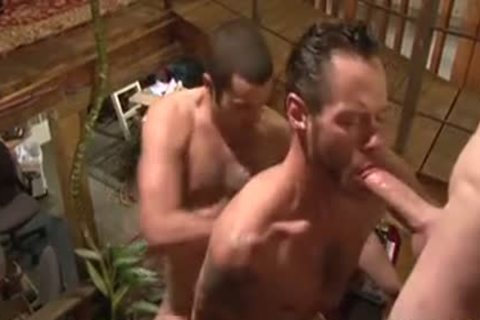 banging Around The abode - Damon Doggs sex sperm Factory