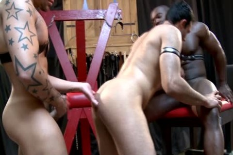 A enjoyable homo three-some Which Is Very painfully!