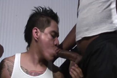 Tattooed non-professional Mexican lad Shared By darksome boyz