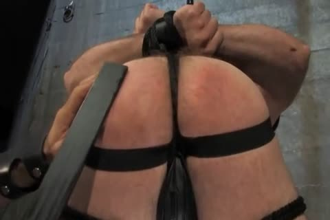 bdsm castigation And bondage pretty fuck