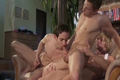Two homosexual guys Seduice A straight lad