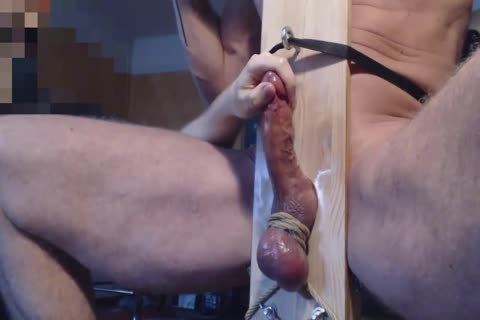 Me Edge Milk Ballbust Hung Cumbull With enormous Balls In Milkingchair