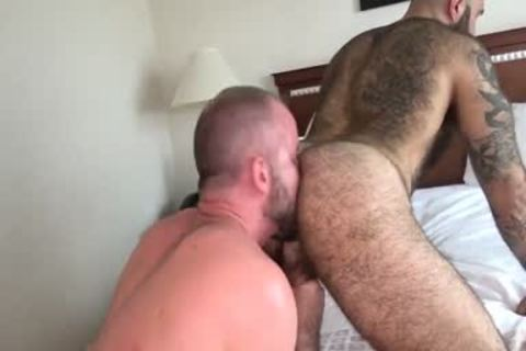 stunning Bears Flip Flop Sex ( Muscle Bear Sex hammering )