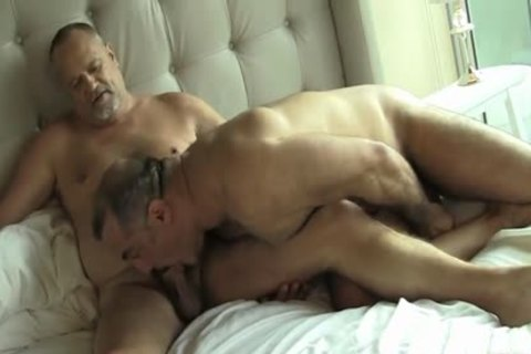 Two lusty Daddy Bears gay Sex