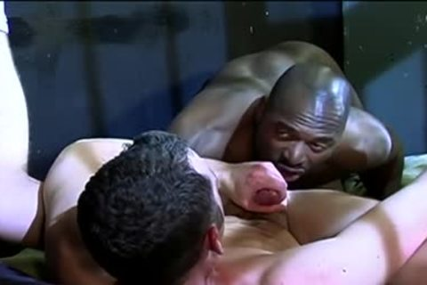 homo Interracial Prison Sex