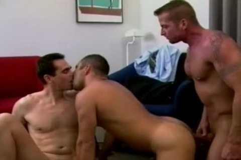 Three lascivious Gentlemen Fondle One another's ramrods