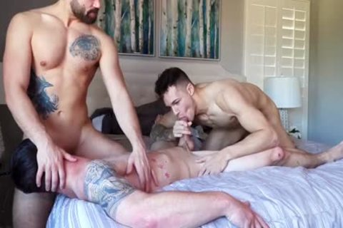 Three WAY! wet College Males Have astonishing homosexual Sex. wet video