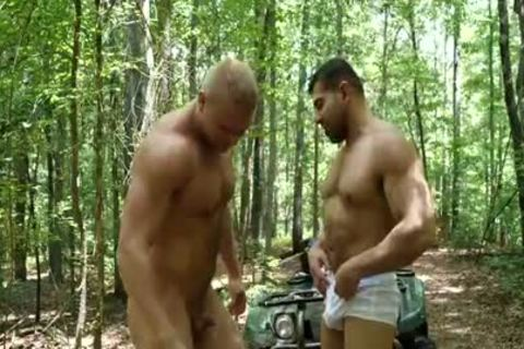 filthy poke In The Woods