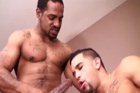 enjoyable Latino Acquires team-nailed By BBC